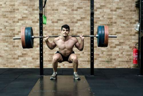 Weightlifter Gym Free Photo