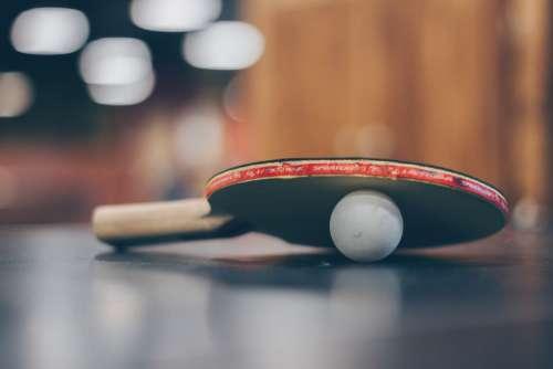 Ping Pong Paddle Ball Free Photo