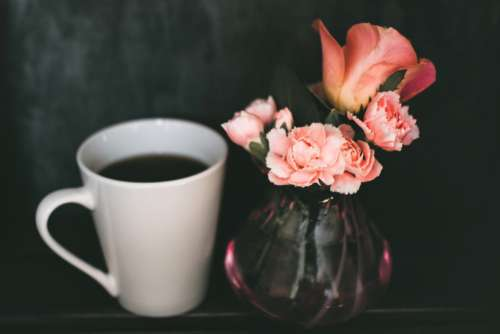 Black Coffee Pink Flowers Free Photo