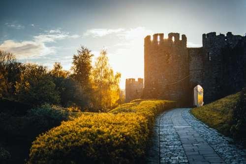 Sunrise Castle Path Free Photo