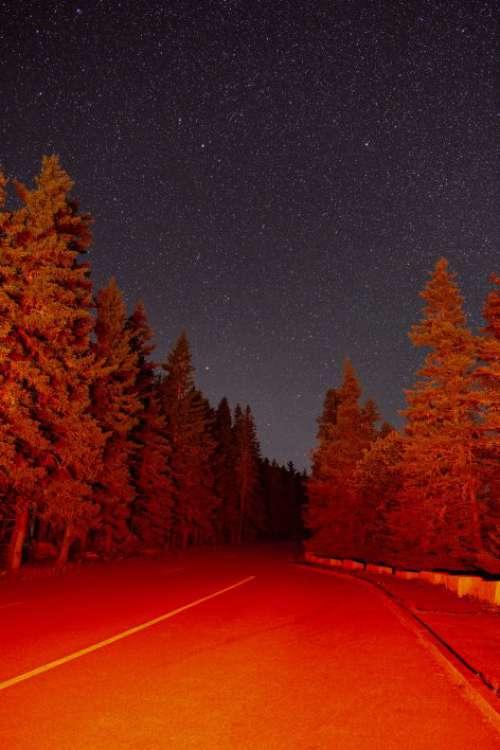 Starry Night Road Free Photo