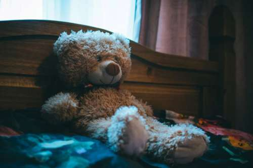 Cuddly Bear Bed Free Photo