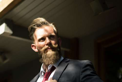 Man Suit Beard Tie Free Photo