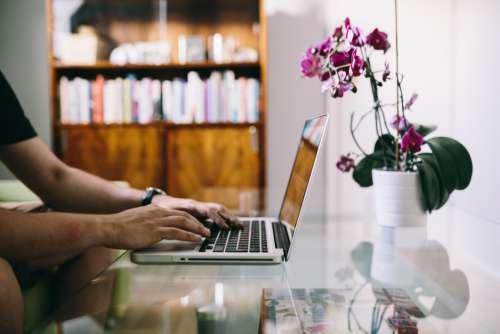 Man Glass Desk Laptop Free Photo