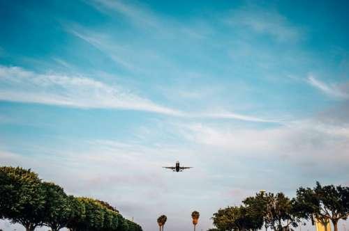 Flying Airplane Free Photo