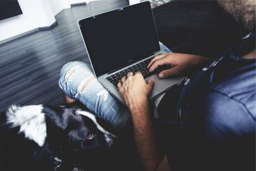 Man Laptop Sitting Jeans Ripped Free Photo