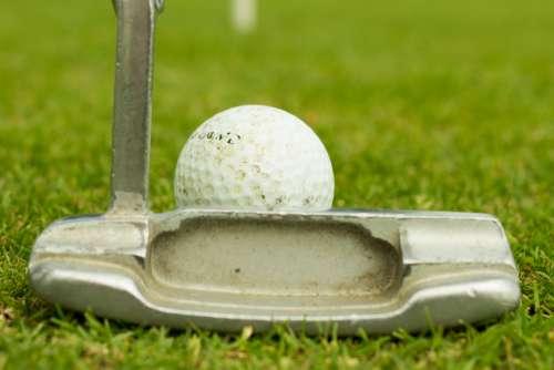 Putter Golf Ball Grass Green Flag Free Photo