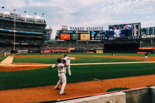 Professional Baseball Yankee Stadium Free Photo