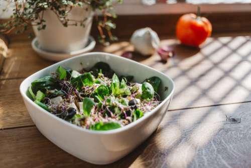 Summer Salad Bowl Free Photo