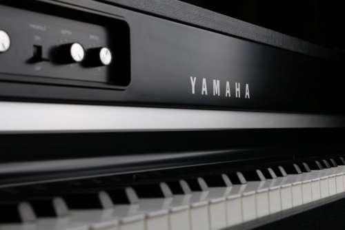 Yamaha Digital Piano Free Photo