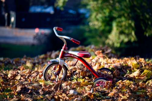 Red Retro Tricycle Child Radio Flyer Free Photo