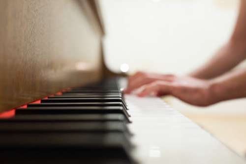 Playing the Piano Free Photo
