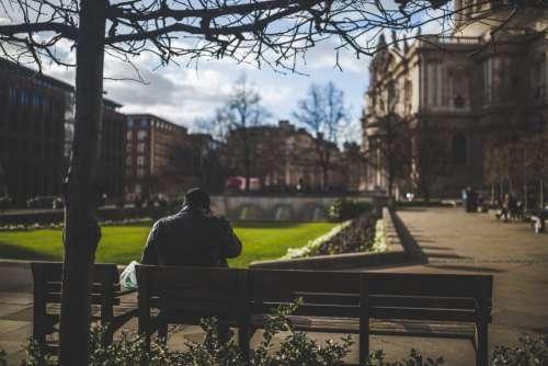 Man Sitting on Bench at Park Free Photo