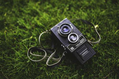 Vintage Camera on The Grass Free Photo