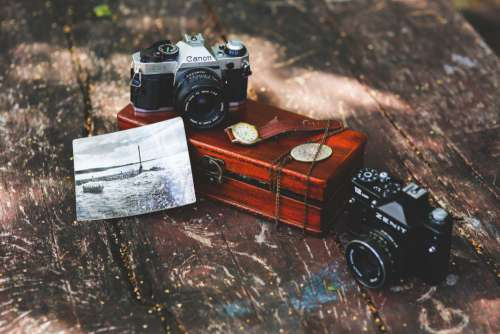 Vintage Camera Collection Free Photo