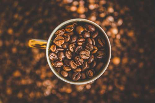 Coffee Cup Full Beans Free Photo