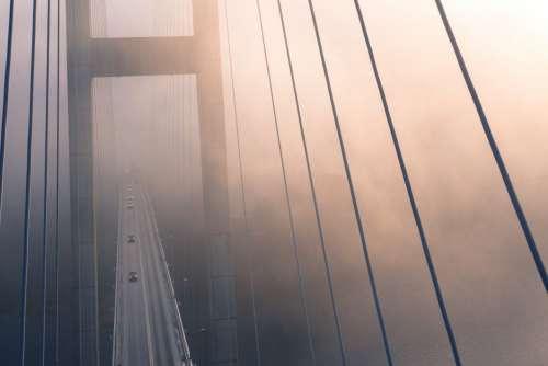 Suspension Bridge Fog Free Photo