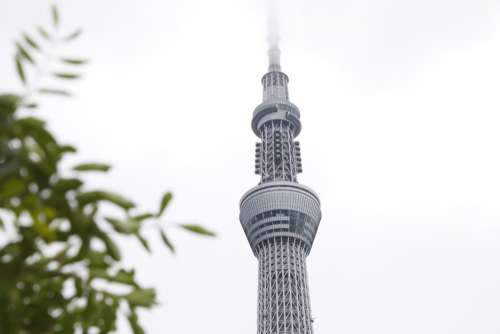 Tower Building in Japan Free Photo