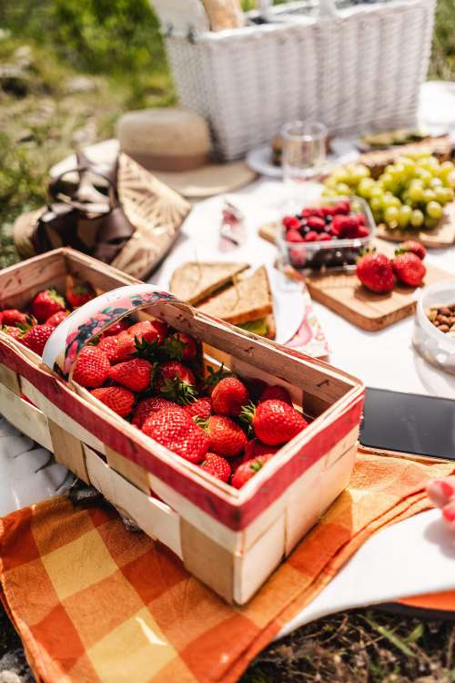 Picnic with Strawberries Free Photo