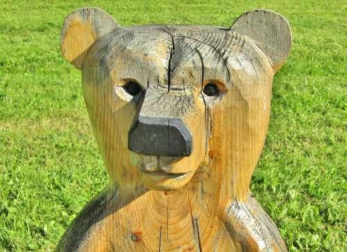 Bear Wood Statue Figure Face Portrait Meadow