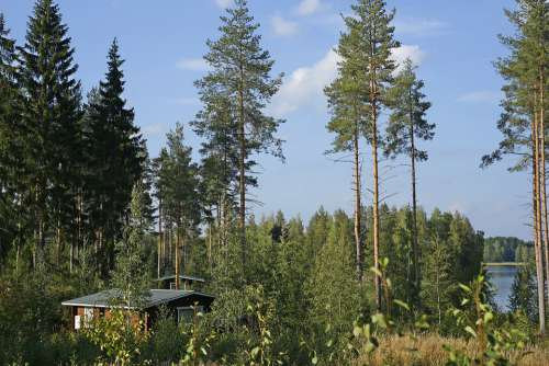 Beauty Trip Finland Russia Emotions Happiness