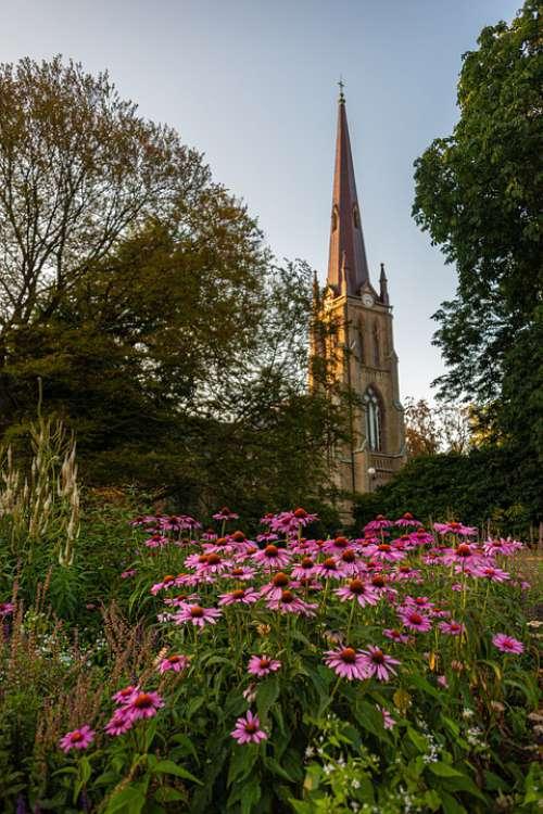 Hagakyrkan Church Flower Flowers Gothenburg City