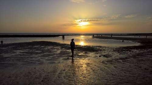 Sun Atardecer Sunset Orange Horizonte