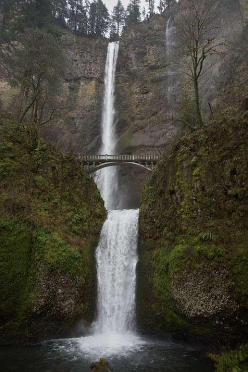 Waterfall Bridge Water Outdoors Woods Evergreen