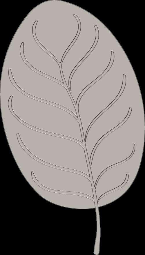 Leaf - 6