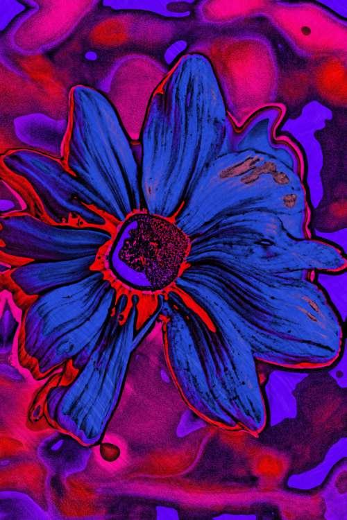 Neon Picasso Flower