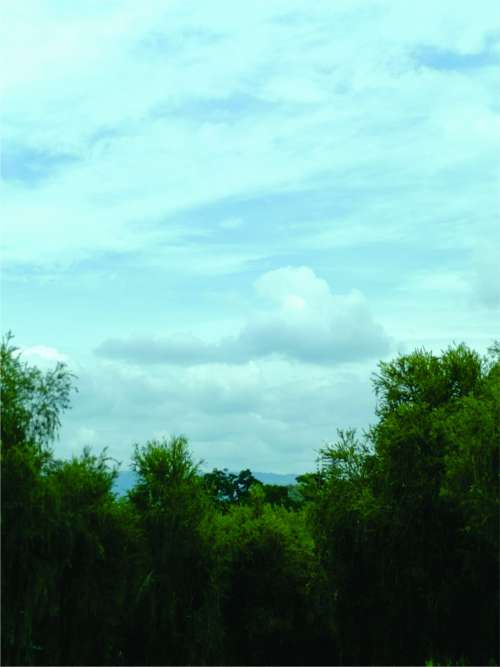 sky trees green blue clouds