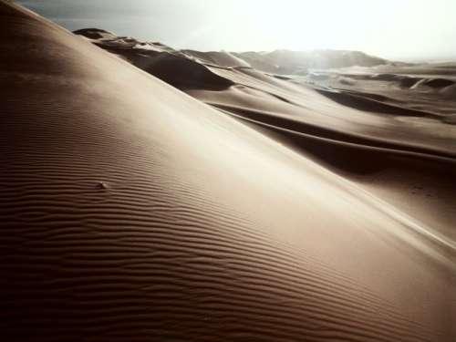 Still in the desert...