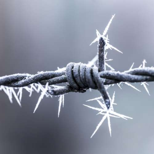 Barbed wire to the max