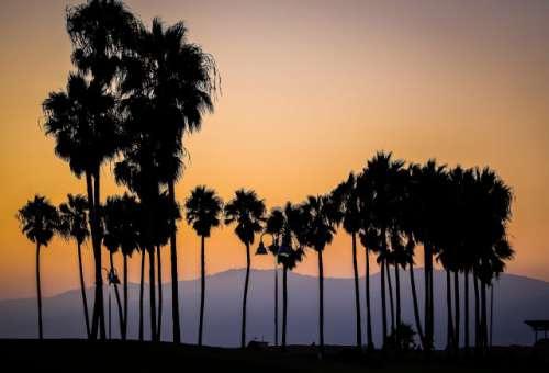 Setting sun over Venice Beach, California