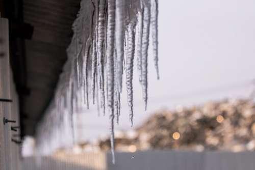 Frozen water drop, this frozen water drop photo was taken at Naju city, South Korea. in winter temperature is gone minus.