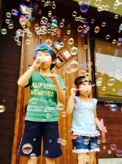 They like a soap bubble very much.