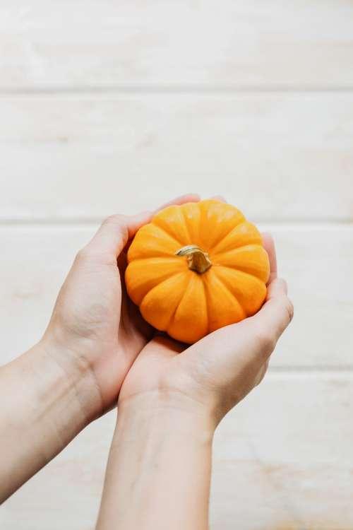 Holding A Pumpkin Photo