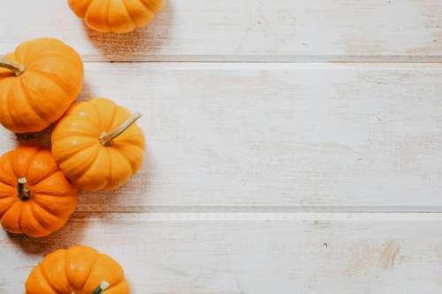 Multiple Pumpkins On Wood Photo