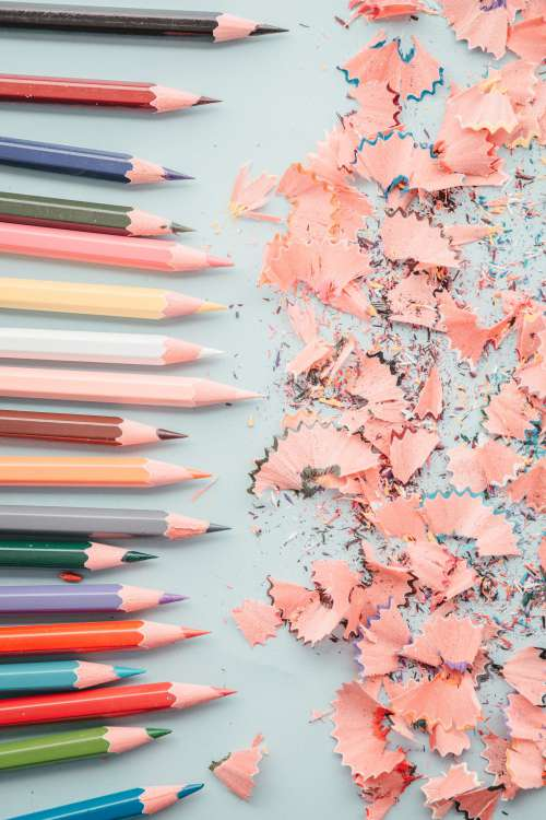 Line Of Pencils And Shavings Photo