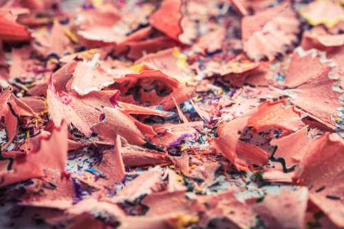 Close Up Of Pencil Shavings Photo