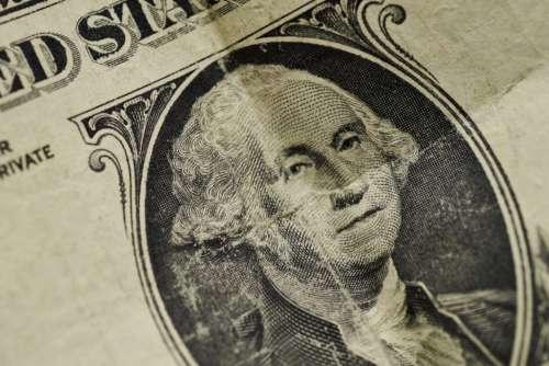 Money Cash Close up Free Photo