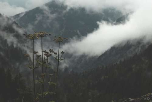 Landscape Scenic Clouds Free Photo