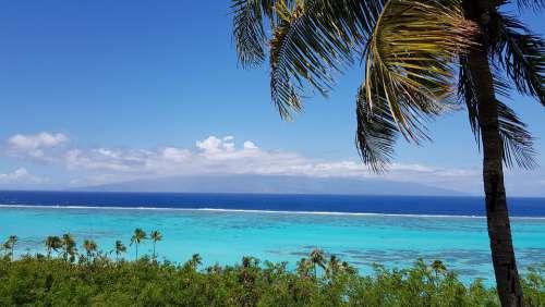 Lagoon Moorea Island Landscape Atoll Beach Tahiti