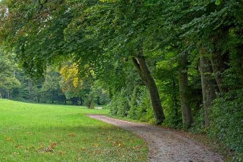 Autumn Away Nature Forest Trees Autumn Mood Path