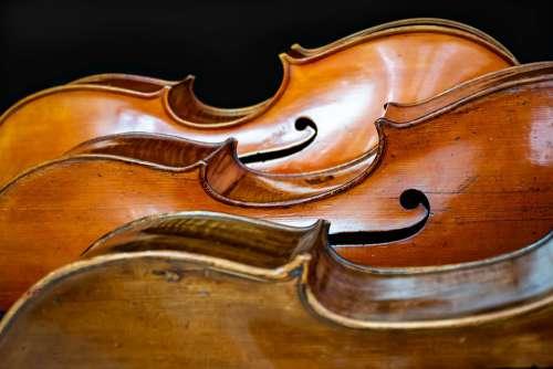Cello Trio Music Classic Creativity Musician