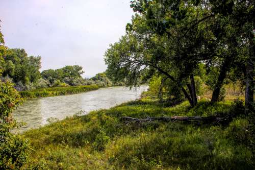 River Water Waterway Landscape Nature Forest
