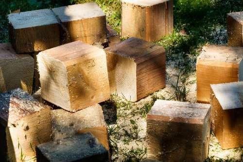Logs Firewood Wood Tree Billet Sawdust Stock