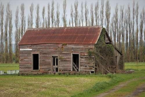 Shed Old Wooden Rusty Roof Run Down Wairarapa