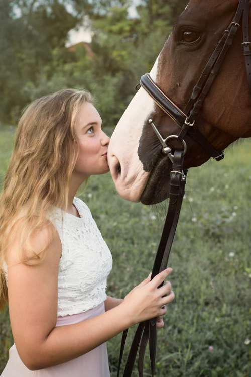 Girl Horse Nature Rider Kiss Portrait Woman