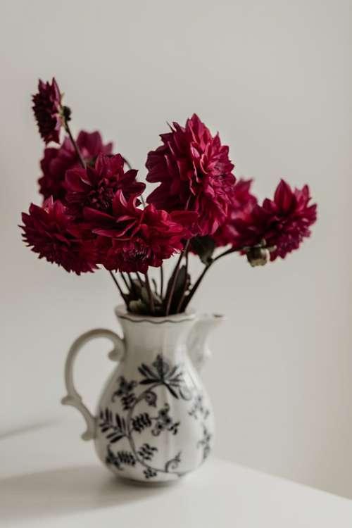 Still Life Dahlia Romantic Blossom Vase